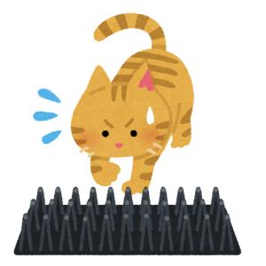 猫が玄関に行かないように『ペットゲート』を設置した結果…😸