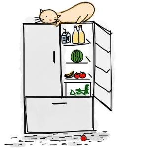 「冷蔵庫の中は涼しい」と知ってしまった猫さんの指定席がこちらですwww