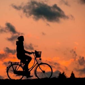 「なぜこんな所に…」スリランカで自転車をレンタルした結果www
