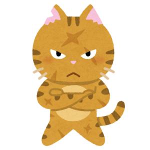 荒ぶった猫さん、毛布を芸術的な形にしてしまうww