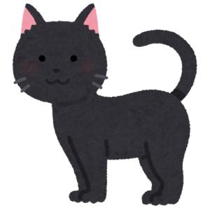 """「愛情って大事なのね…」ある会社で拾われた黒猫の""""ビフォーアフター""""にツイ民驚愕😸"""