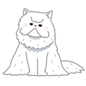 「会社で迷い猫を保護した」とツイートして飼い主が現れないまま4か月…今では立派な重役です😼