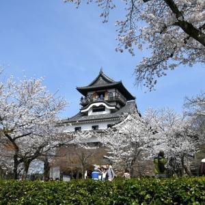 愛知県の『犬山城』で最強の癒やしスポットが発見されるwww