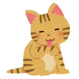 グルーミングされてるのになぜか不機嫌そうな猫。裏から見たら…納得😹
