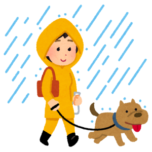 台風前にどうしても散歩に行きたかったワンコの「こんなハズじゃなかった」顔をご覧くださいwww