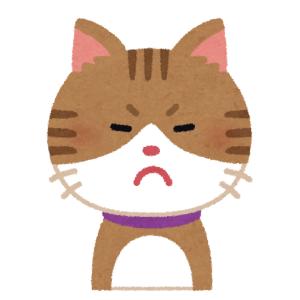 「そしてこの顔である」…ご主人に絶対パソコンを触らせたくない猫さんの鉄壁ガードwww