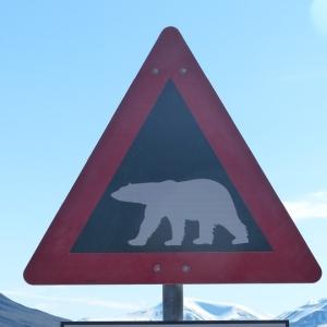 """「そっちかよ!」…ある山中に立てられた""""クマ注意""""の看板が斬新だと話題にwww"""