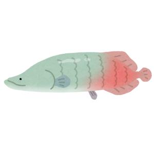 """【動画】大口を開けた水族館の巨大魚を正面から見たら…まるで""""波動砲""""のようだと話題に😨"""