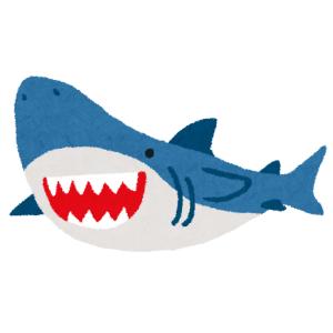 「さすが主力商品…」IKEA店員によるサメぬいぐるみの展示方法が可愛すぎるw