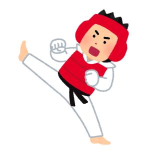 """【超進化】""""当たり判定""""に""""体力ゲージ""""!? まるで「格闘ゲーム」のような韓国のテコンドー試合が話題に"""