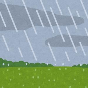 ある雨の夜に自宅にたどり着いたら…ヤベェ奴が待ち構えていた😽