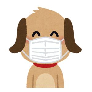 某百円ショップでマスクが大量に売れ残っている!? あるツイ民の写真に「そりゃそうだ」といった声も