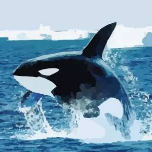 """『名古屋港水族館』にいるシャチの""""鳴き声""""が一番聞こえるスポットが意外すぎる場所だったwww"""