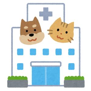 【悲壮】動物病院で注射された後のワンコの表情が切なすぎる…w
