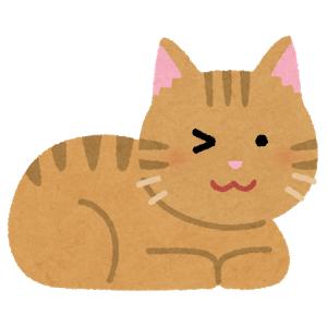 【悲報】「あの有名ネコ」を真似て、飼い猫を腕に抱きつかせようとした結果…😽
