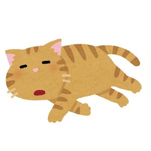 「猫がくっついて眠りだしたら動いちゃダメ」ってルールは犬にもわかる。