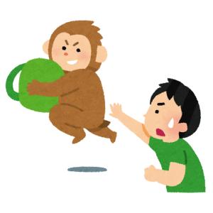 【動画】奈良どころの騒ぎじゃない!タイで猿に餌をあげる観光客がいなくなった結果…😨