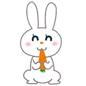 【悲報】多摩動物公園のウサギさん、うっかり最終形態を見せてしまう😨