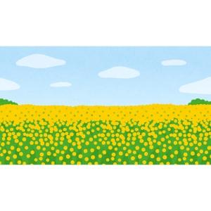 「そうだ! 菜の花と犬を並べてオシャレな写真を撮ろう!」→結果😂