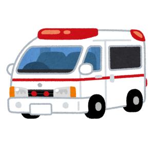 【動画】「不眠症になりそう…」オランダを走る救急車のサイレンが怖すぎる😱