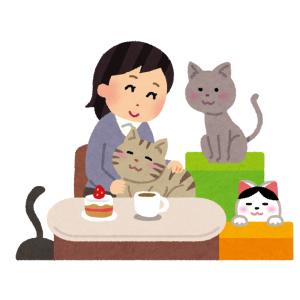 ある猫カフェがお休みだったので「コロナの影響か」と思ったら…予想外の理由だったwww