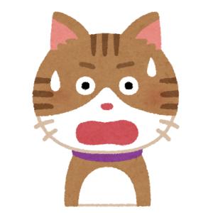 【悲哀】掃除機をかけているとものすごい表情になる猫さんwww