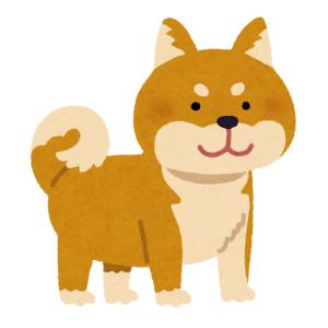 【動画】雷にビビりまくりな柴犬ワンコが可愛すぎるwww