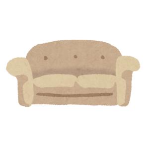 【動画】「うちのソファで寝てると生傷が絶えない・・・」→納得の光景www