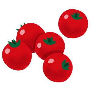 【困惑】スーパで買ったこのトマト…絶対売り方間違ってるよな🤔