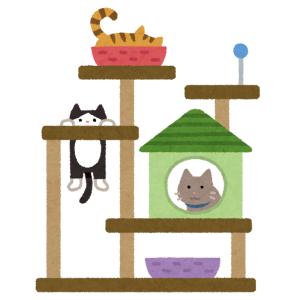 【動画】キャットタワーに飛び乗ろうとした猫さん、玉砕😹
