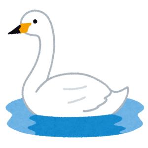 【至福】最上級に懐いてる白鳥をハグすると…こうなるらしいw