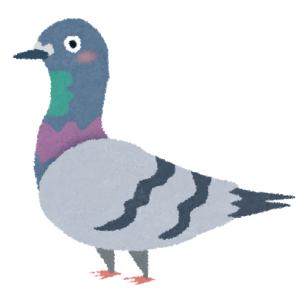 「都内とは思えない…」あるタワーマンンションによる鳩の撃退方法が意外すぎると話題にwww
