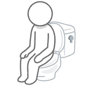 【大惨事】まさか、トイレのココが折れるとは……😨