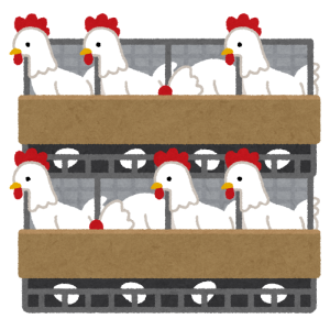 「さすがに初めて見たわ…」鹿児島の養鶏場、卵にとんでもない商品名を付けてしまう…😂