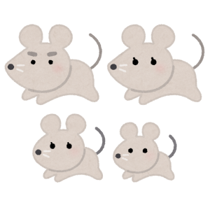 【閲覧注意】大雨で逃げ場を失い「頭隠して尻隠さず」状態になってしまったネズミの群れ(中国)