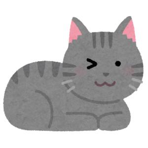 人類よ これが リアルなマッチョボディ猫だ…💪