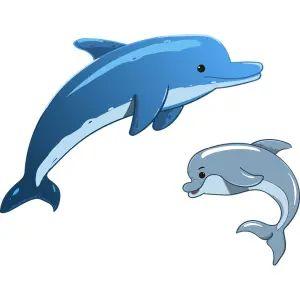 【悲報】香川の水族館、イルカにとんでもないエサをやっているらしいwww