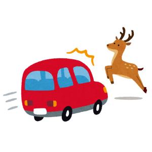 「クマや牛どころの騒ぎじゃない…」北海道はとんでもないモノが道路を横切るらしい😱