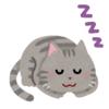 """「やはり猫は液体なのか…」睡眠中に""""液化""""しかかっている猫さんが話題にwww"""