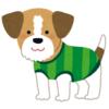 通販サイトで売っている『犬用セーター』モデルの犬の表情が…正直すぎるwwwww