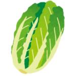 100円玉しか入らないコインロッカーで150円の白菜を売る方法が独特すぎたww