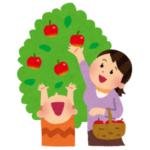 """「糖度スゴそう…」あるリンゴ農家で収穫されたリンゴがあまりに""""過蜜""""だと話題に🍎"""