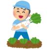 """【神話】あるツイ民の畑で獲れた大根の形が""""禍々しすぎる""""と話題に😱"""