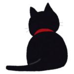 【動画】塀の上で熟睡する謎の黒い生き物。黒猫かと思って近づいてみたら…嘘だろ😨