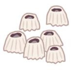 【神秘】脱皮した「フジツボ」の抜け殻が美しすぎると話題に…