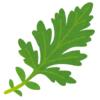 【悲報】ブラジル人ハーフのデニス植野さんが「乾燥ヨモギ」を持つと…実にヤバいビジュアルに🤔