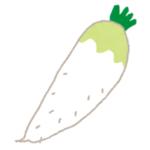 【驚愕】家庭菜園で育てている大根が…めっちゃ寛いでた😂