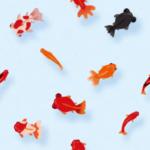 「ギョッとした…」台湾の料理店で食べられる『金魚型餃子』がリアルすぎると話題に😳