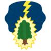 【注意】雷が近い時に「木の下」に居てはいけない理由…ツイ民も震え上がる衝撃動画😱