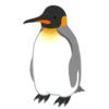 【魚雷】水槽を高速で泳ぐ子ペンギン、勢い余ってフライングボディプレスwww